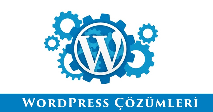 Wordpress Hizmeti, WordPress Teknik Destek